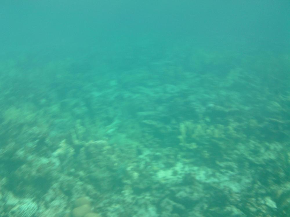 2012-08-21 16.22.49.jpg