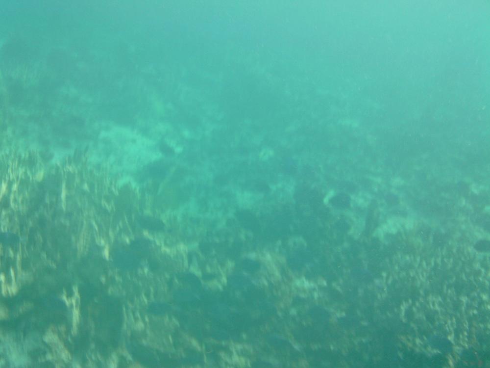 2012-08-21 16.23.21.jpg