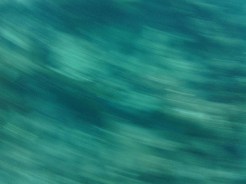 2012-08-21 16.33.53.jpg