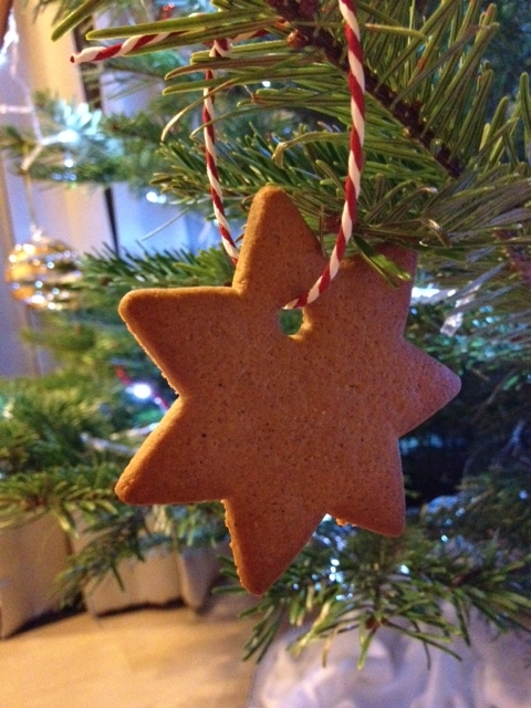 Cookie ornament courtesy of our friend Katharina!