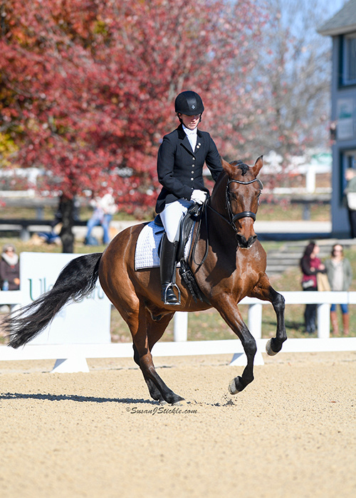 2016 US Dressage Final, Emily and XO, Lexington, KY  Photo: Susan Sickle