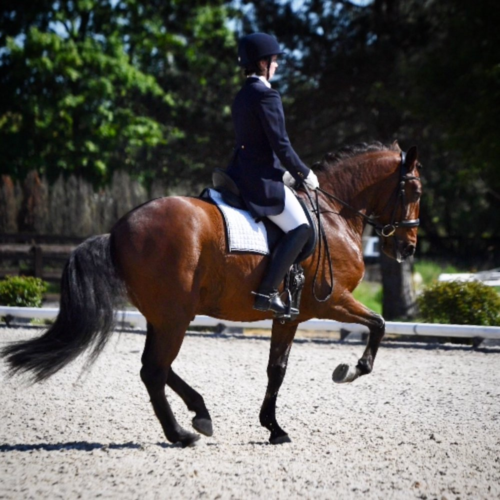Emily and Excalibur Grand Prix at Donida Farm in May 2018, owned by Delight Willing.  Photo: Mike Fisher