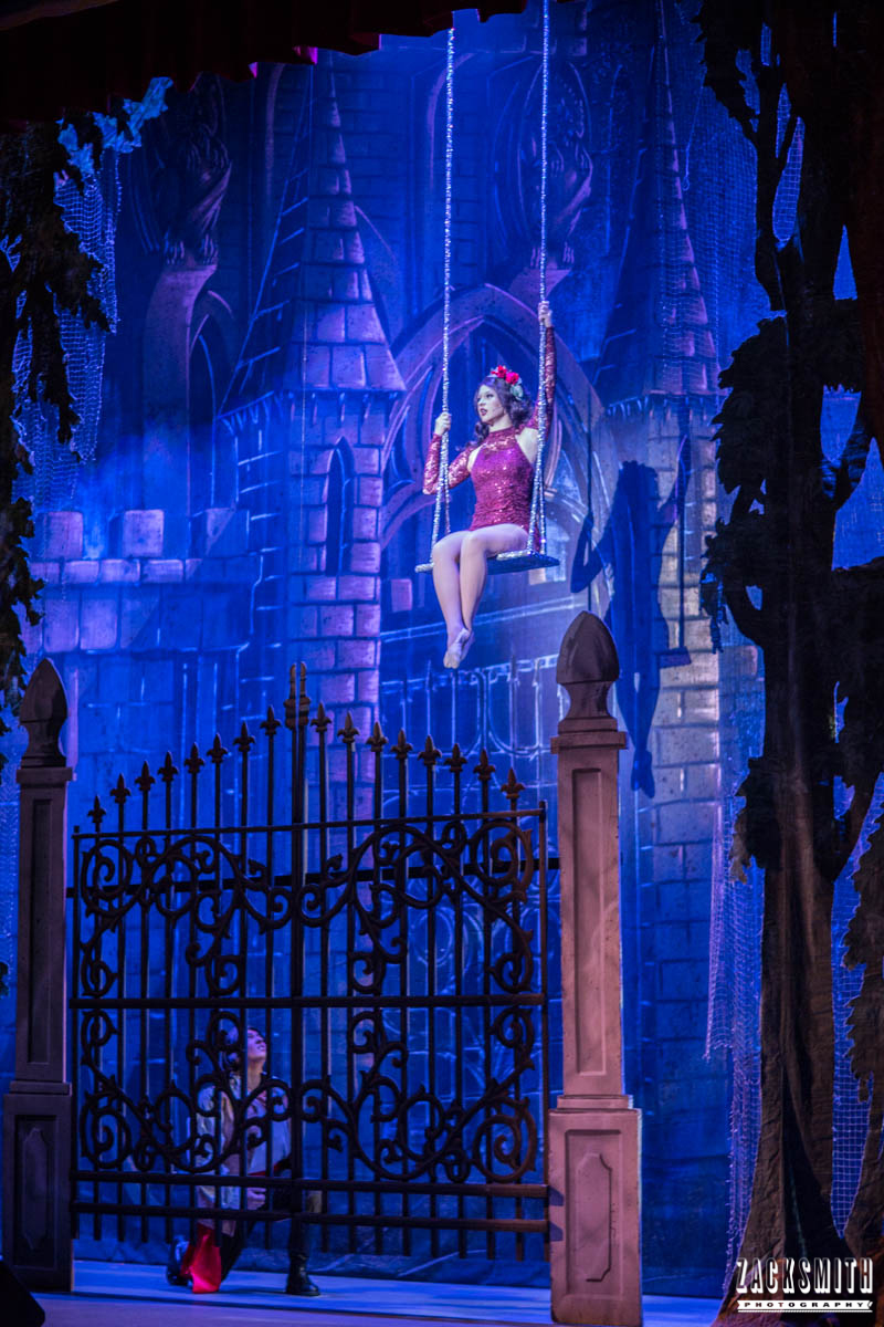 Beauty and the Beast The Performing Arts Academy Talent Performance Photography Zack Smith Photographer Chalmette Enchantress Swing Castle Gate prince