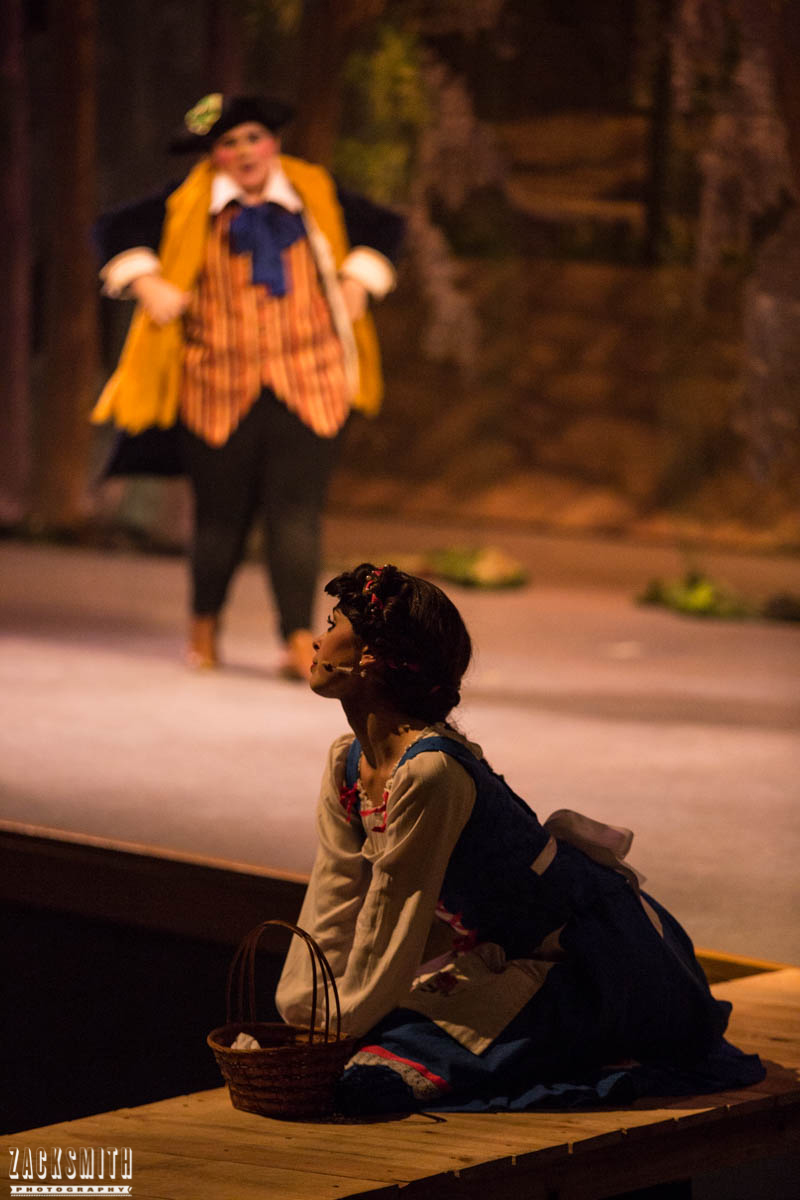 Beauty and the Beast The Performing Arts Academy Talent Performance Photography Zack Smith Photographer Chalmette Lefou Belle Bridge Stage Musical Theater