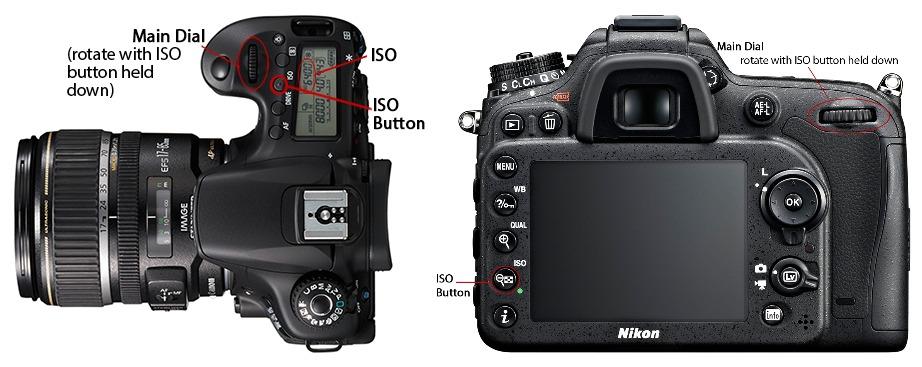 Left: Canon /  Right: Nikon