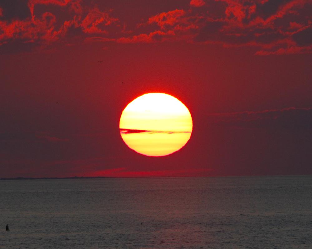 Sunsetgrella.jpg
