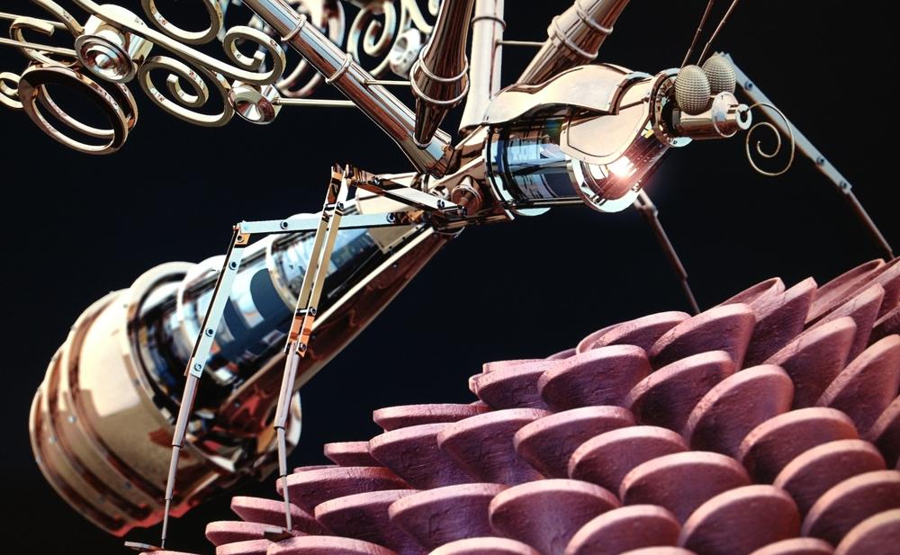 Photo 01-11-2012 10 50 32.jpg