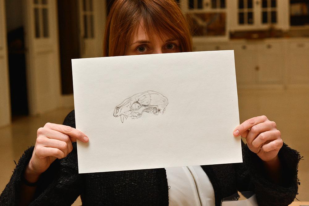 Sarah's Racoon skull drawing