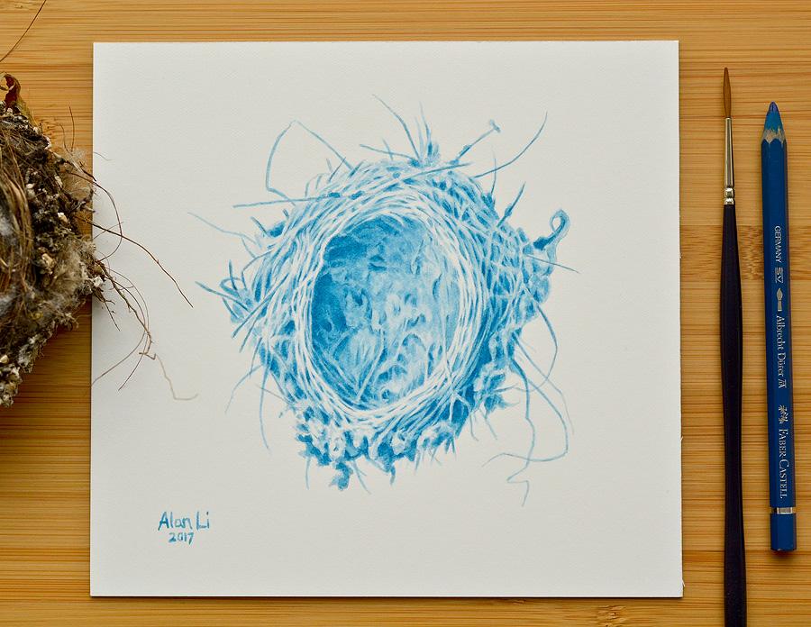 Nest_03.jpg