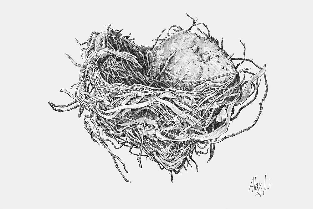 Robin's Nest, ink on board