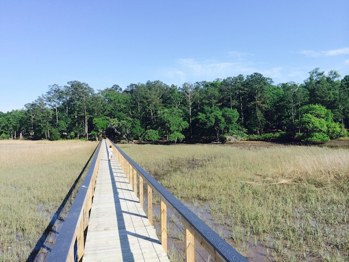New home site on the Stono River.