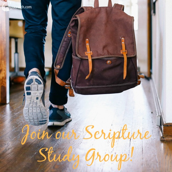 Join our Scripture Study Group! What a great way to study and learn even more- I love it!