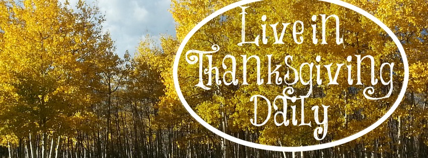 This scripture study program is a great start to living in thanksgiving daily
