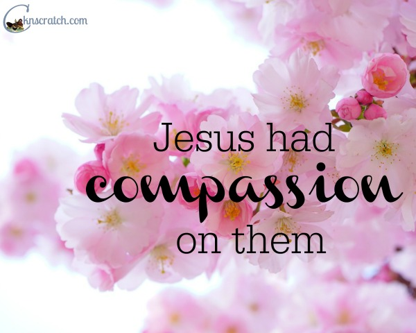 I love the compassion shown through the miracles of Jesus- amazing LDS Easter Scripture Study #SharetheMiracle