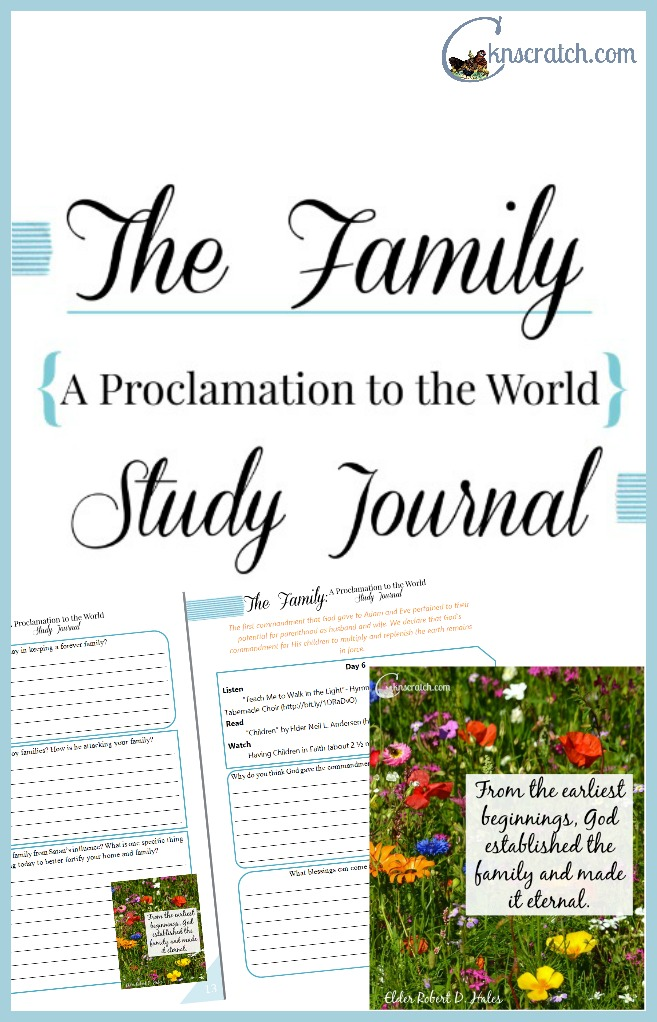 What a great idea! A study journal to go along with the Family Proclamation! It's a 3 week study.