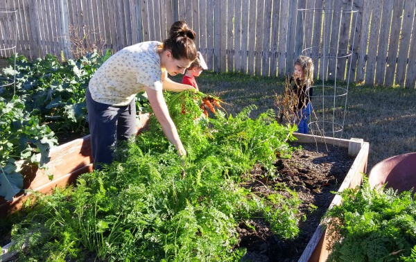 The Benefits of a family garden are more than just food