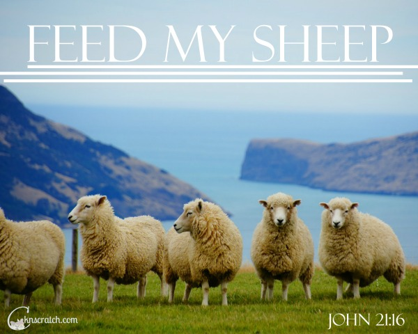 "These additional insights, teaching tips, and LDS handouts are great for Ezra Taft Benson Chapter 20: ""Feed My Sheep"""