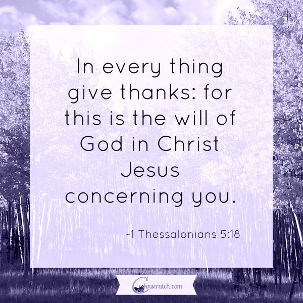 How will you give thanks today? #livethanksdaily