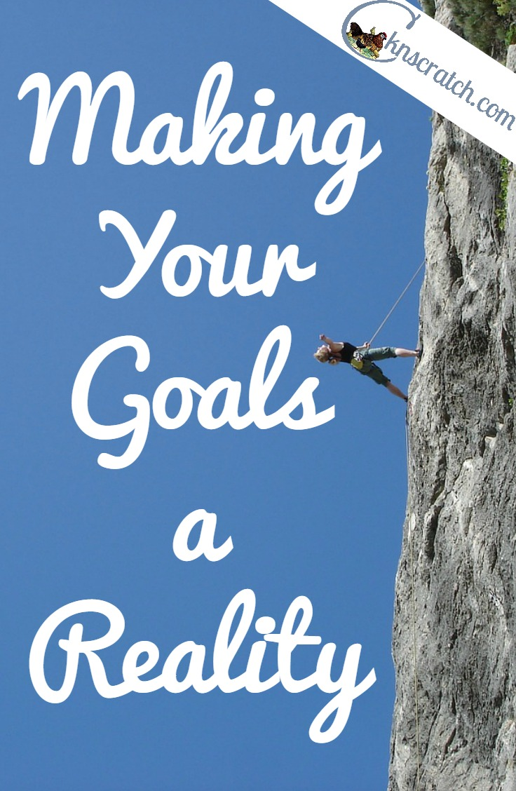 Make plans to actually accomplish your goals this year.