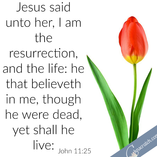 Easter Scripture Study