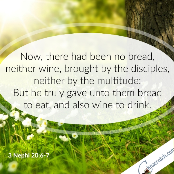 Easter Scripture Study that covers the miracles that Jesus performed
