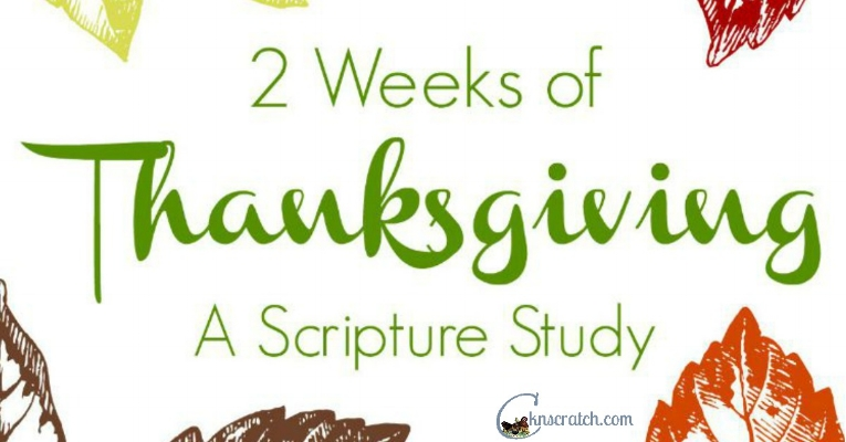 Study gratitude