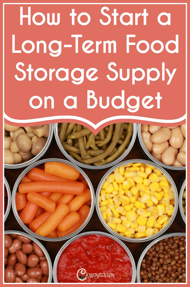Great tips on how to get started with food storage