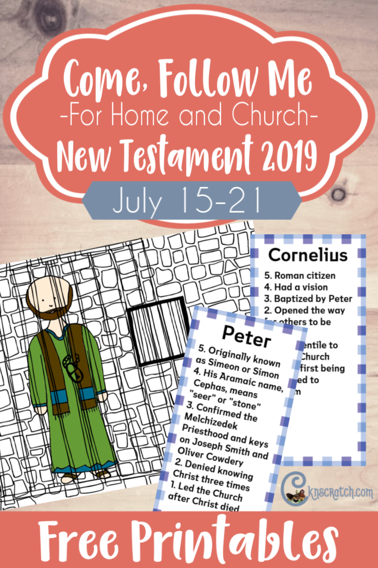 New Testament: Individuals and Families — Chicken Scratch N Sniff