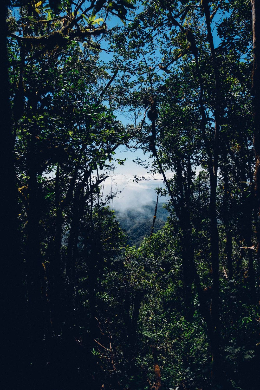 nicaragua-73.jpg