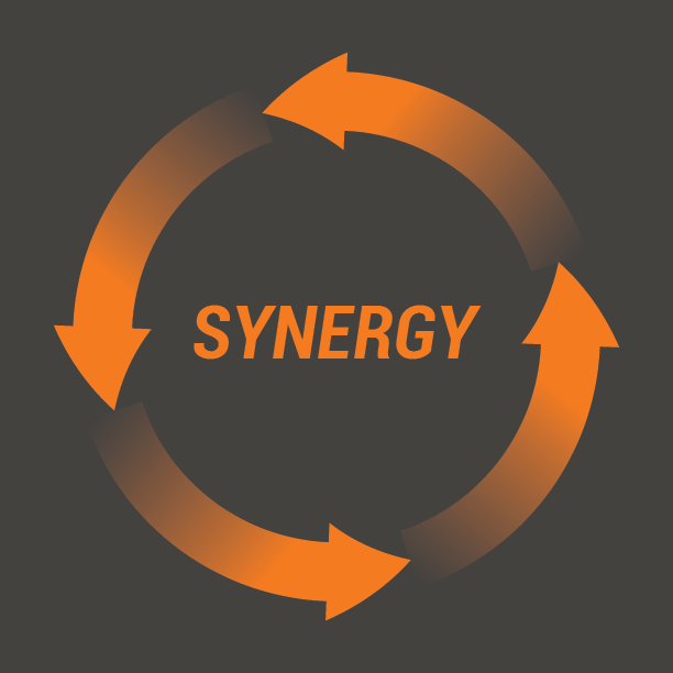 Synergy - Design commission for new logo. Two layouts in 3 backgrounds presented.  See More