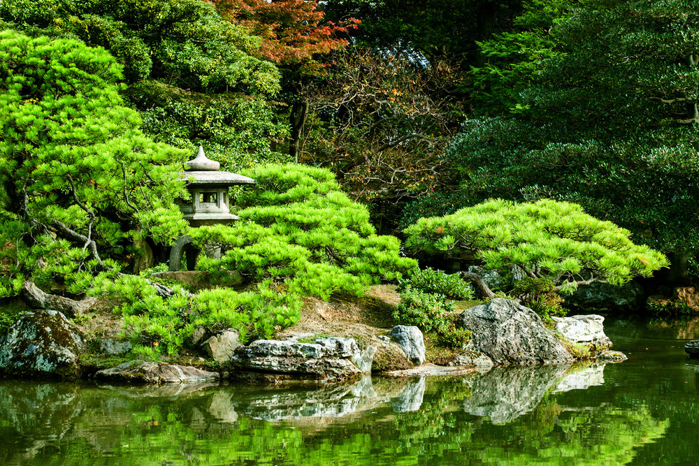 Garden in the Imperial Palace