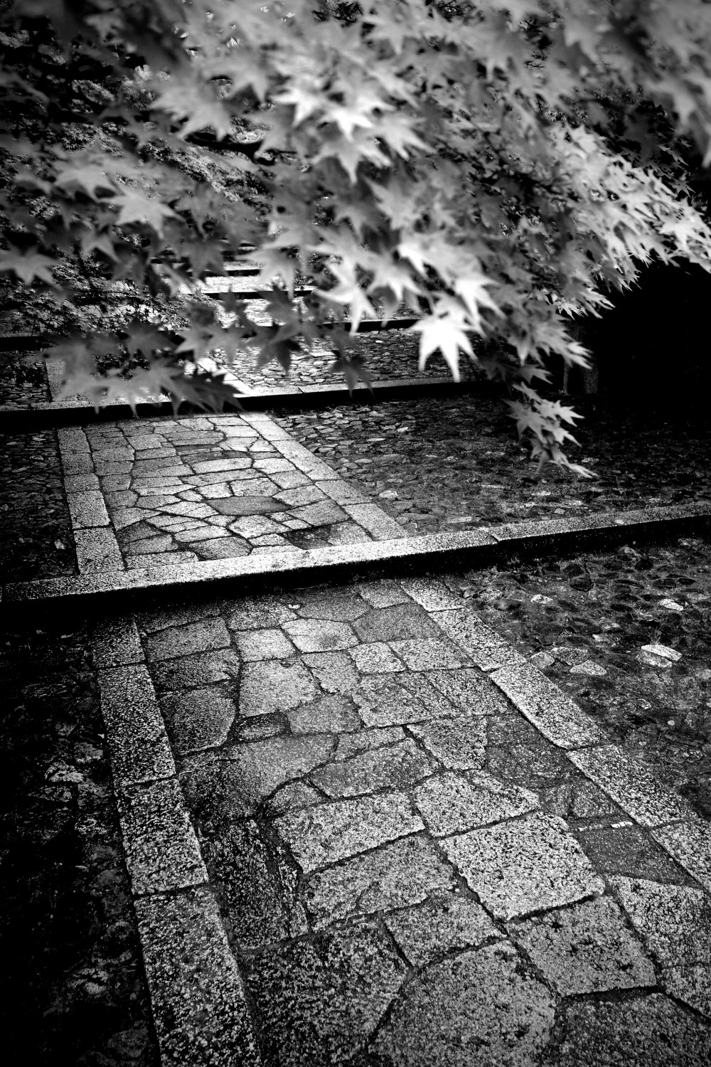 Shinnyodo Temple Path