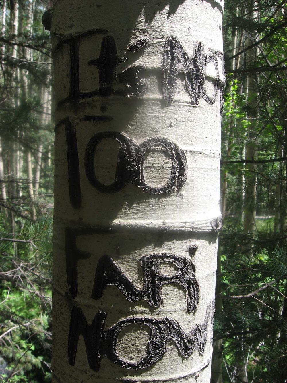 hike to Lobo