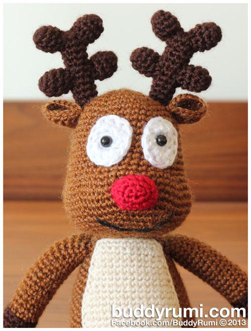 Reindeer Closeup.jpg