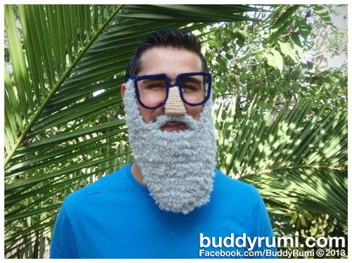 Disguise Beard.jpg