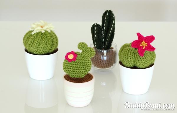 Amigurumi cacti crochet