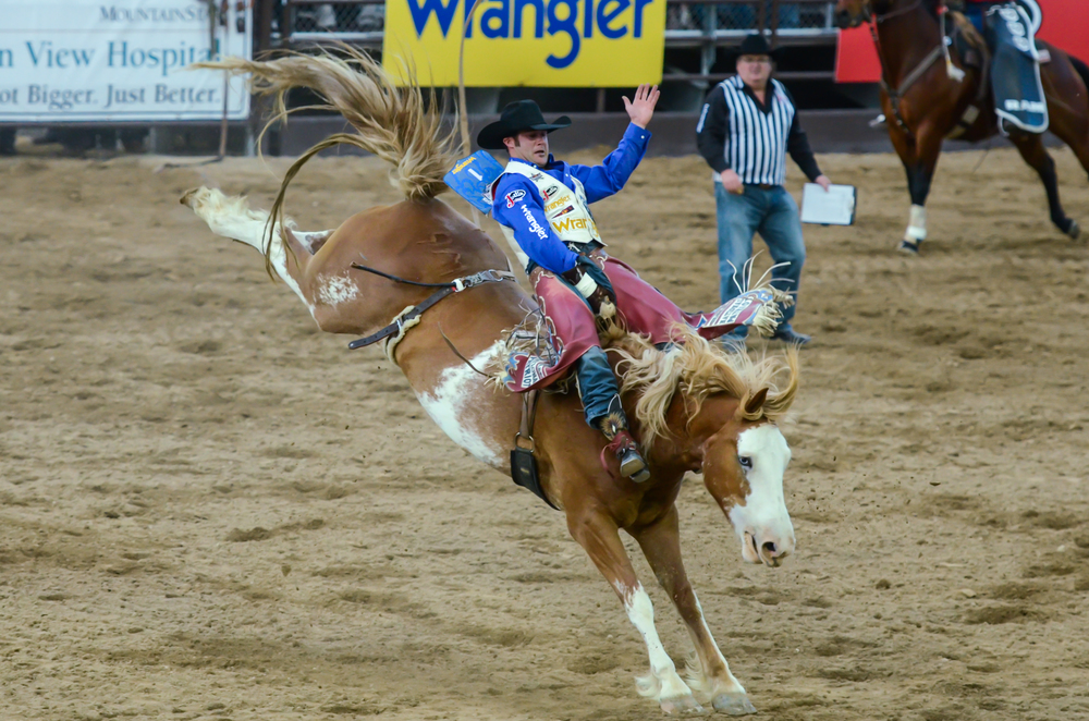Pictured: Tie-down roper Clint Robinson and 2013 World Bareback Champion Kaycee Feild    Photo by Todd Phillips (see  picmeshining.com  for more)