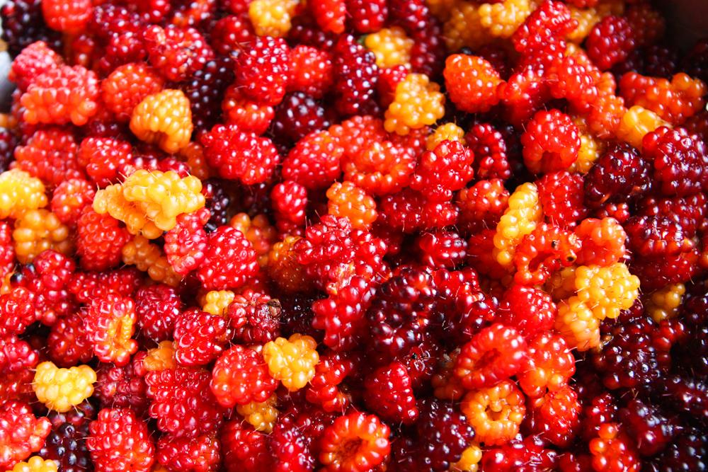 Salmonberry Jam
