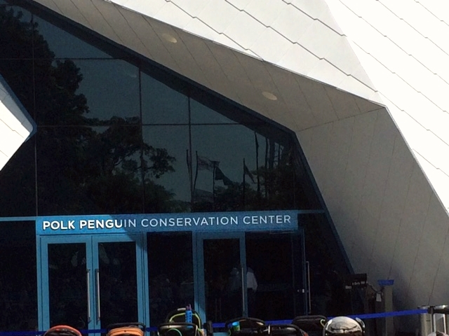 Detroit Zoo: Polk Penguin Center
