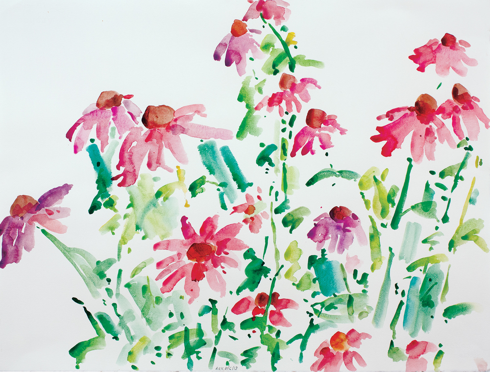 Echinacea-8613-22x30