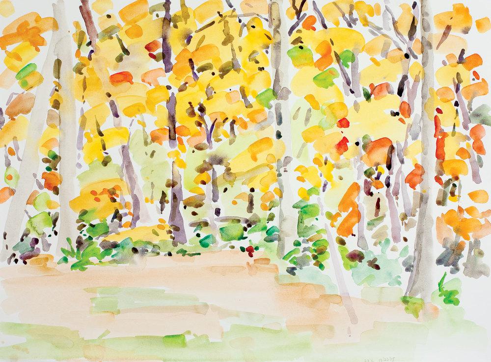 Backyard Autumn-102315-22x30