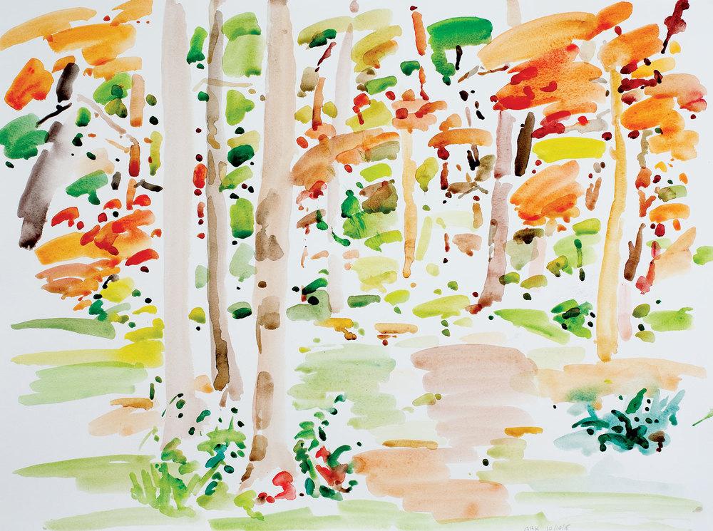 Backyard Autumn-103015-22x30