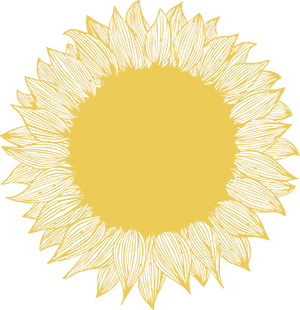 Sunflower-Yellow-300.png
