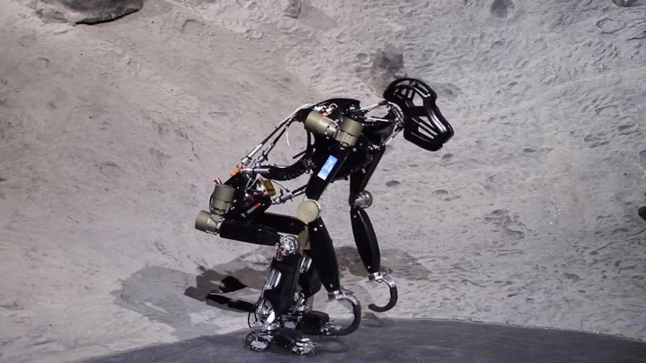 robotchimp-970-80.jpg