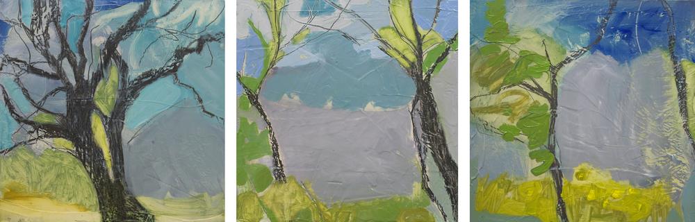 Trees & Air