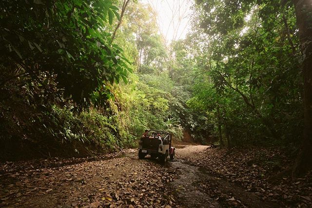 Land cruising in #costarica. 🐒