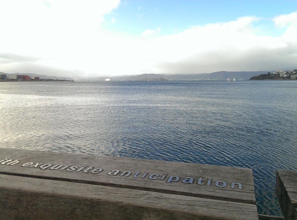 Wellington Waterfront - photo credit Helen Clegg