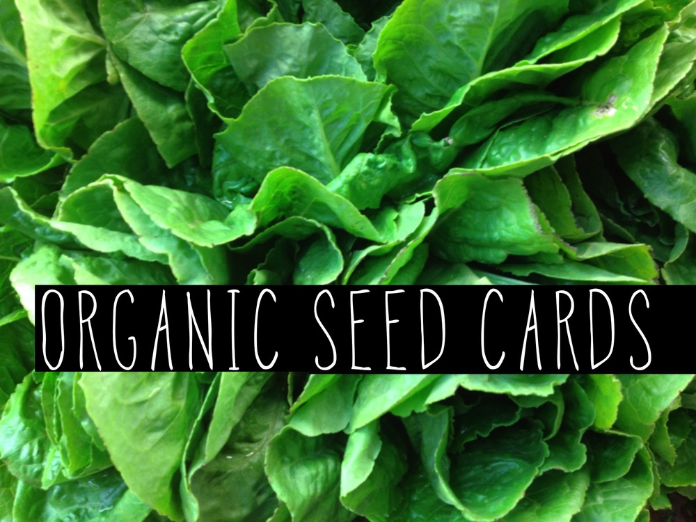 Click Image to view Organic Seed Webpage.
