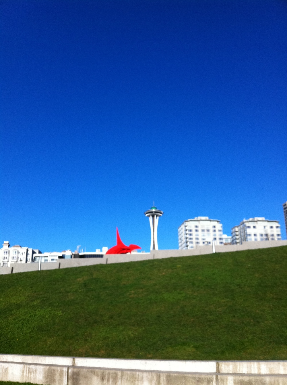 Looking back to the city from Olympic Sculpture Park Seattle by drawntocities.com