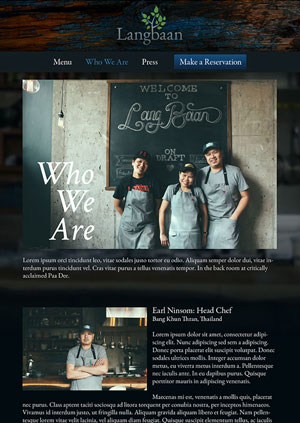 Lang Baan Website   UX Design, Creative Direction, Web Design